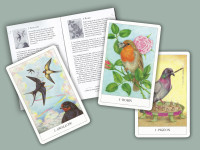 Bird-Card-pocket-pack–Set