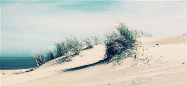 venue info dunes beach
