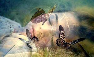 breakthrough butterfly