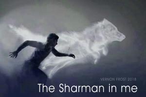 Sharmanic Retreat image